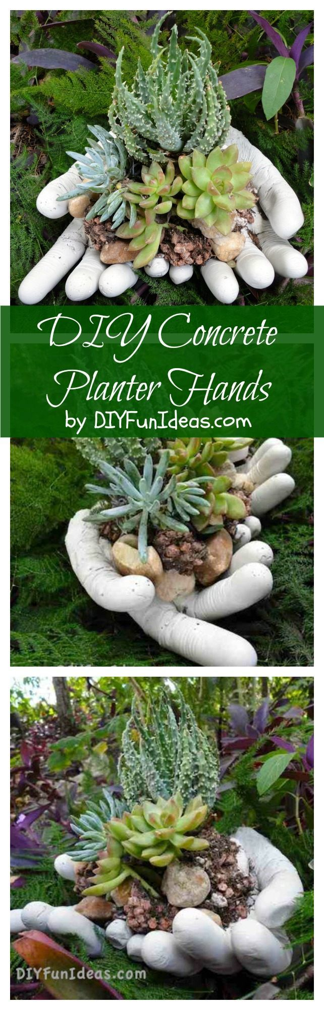Make these DIY concrete planter hands for your succulents in only 20 minutes! So easy! By Jenise @ DIYFUNIDEAS.COM