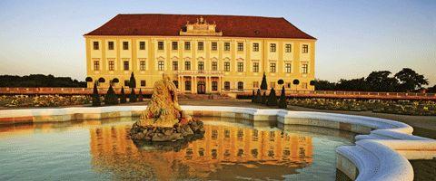 Schloss Hof  A Bécstől keletre fekvő síkságon várja látogatóit Ausztria legnagyobb vidéki palotakomplexuma, a Hof Császári Fesztiválpalota. A palota, illetve az azt körülvevő, hatalmas területű parkok és kertek szigorú barokk elvek alapján épültek. Nemrégiben a teljes terület visszanyerte korábbi pompáját. A barokk kert ezentúl minden tavasszal újra virágba borul. Emellett a legnagyobb fennmaradt barokk uradalmi birtokot a császári Ausztria korában elterjedt, ma már ritka állatok népesítik…