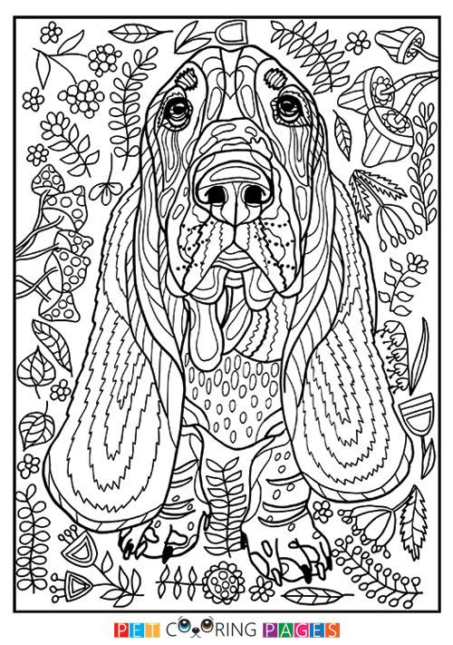 bassett coloring pages - photo#24
