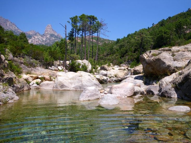 Corsica - Fleuves et Rivières - Le Cavo est un petit fleuve côtier de la Corse-du-Sud et se jette dans la mer Tyrrhénienne.La longueur de son cours d'eau est de 21,9 km.Dans sa partie haute, pour l'Institut national de l'information géographique et forestière, le Cavo s'appelle le ruisseau de Sainte-Lucie, puis le ruisseau de Finicione. Il prend sa source à 1 km au nord-est du Puntacci (1 221 m), à l'altitude 950 m, dans la forêt territoriale de l'Ospedale, sur la commune de Zonza.