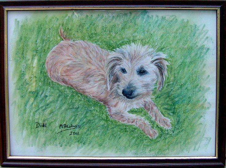 Didi, son portrait au pastel