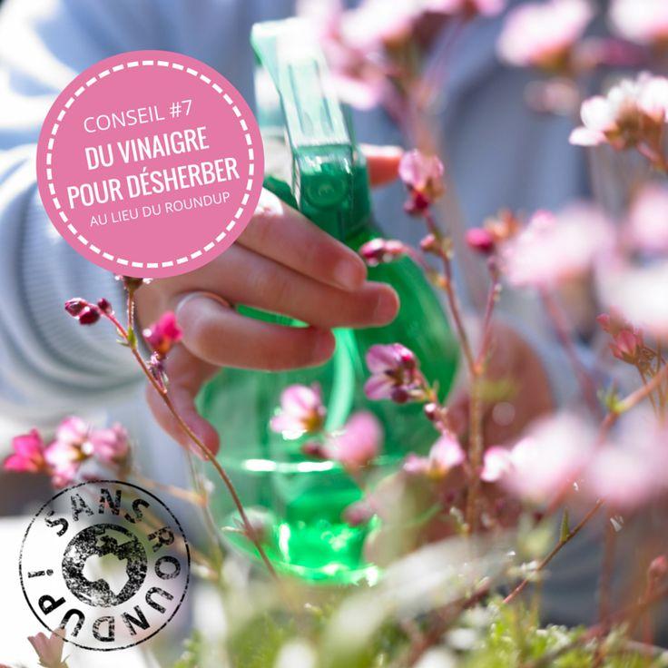 12 best un printemps sans pesticide images on pinterest for Desherbant eau sel vinaigre