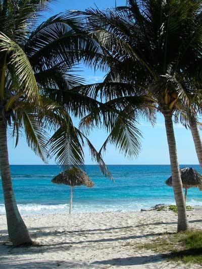 Cayo Largo : une île paradisiaque//Cayo Largo est une île cubaine de l'Archipel des Canarreos. L'île est aussi connue sous le nom de Cayo Largo del Sur. C'est une petite île de plus ou moins 25 km de long par plus ou moins 3 km de large dans sa partie la plus large. Wikipédia