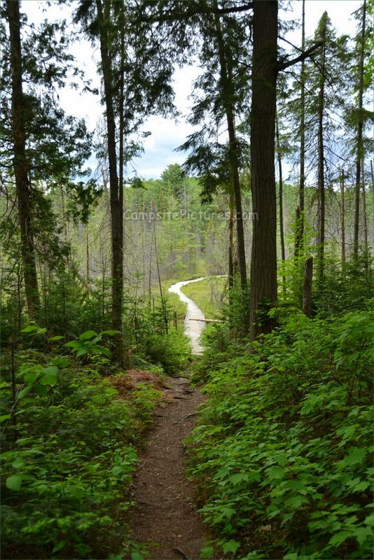 Algonquin Park Trails, Camping in Ontario, Mizzy Lake  #algonquinpark