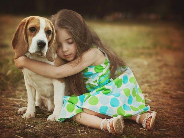 воспитание собаки, процесс воспитания собаки, воспитание щенка, процесс воспитания щенка, как воспитывать собаку, как воспитывать щенка, как воспитать собаку, как воспитать щенка, с чего начать воспитание собаки, с чего начинается воспитание собаки