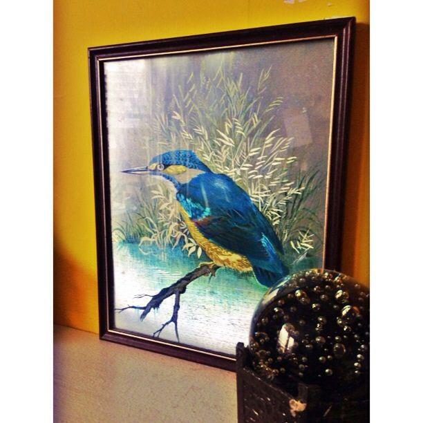 King fisher bird printed on Metallic paper