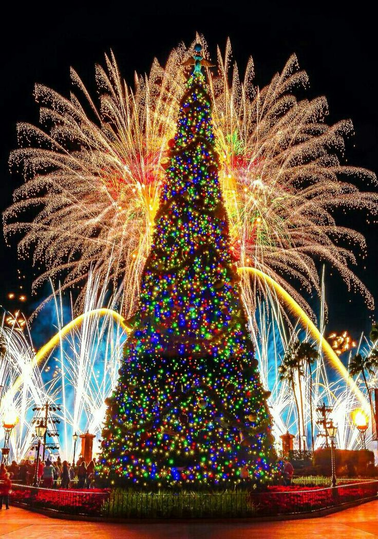 Epcot Holiday Illuminations
