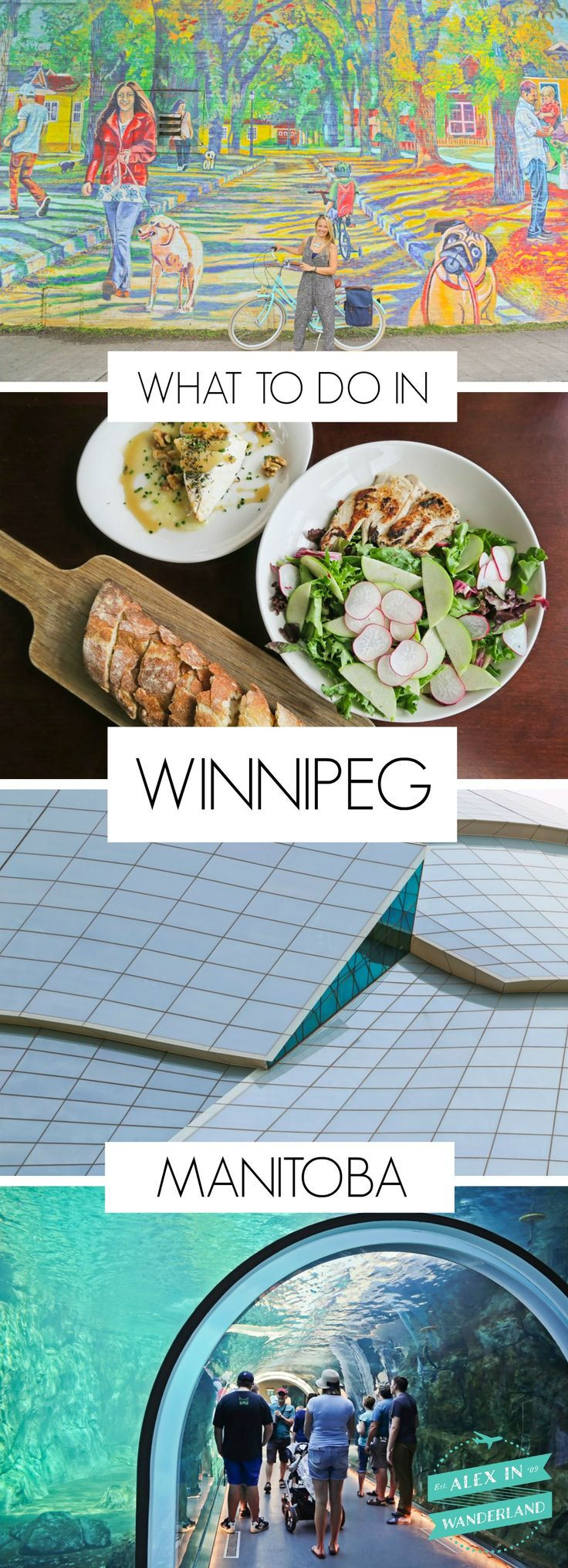 Given Winnipeg's small size, I definitely didn't anticipate finding in a Canadian capital bursting with creative people, lively music, delicious food, inspiring art and architecture, and a calendar overflowing with events to attend! Here are my top picks for what to do in Winnipeg, Manitoba.