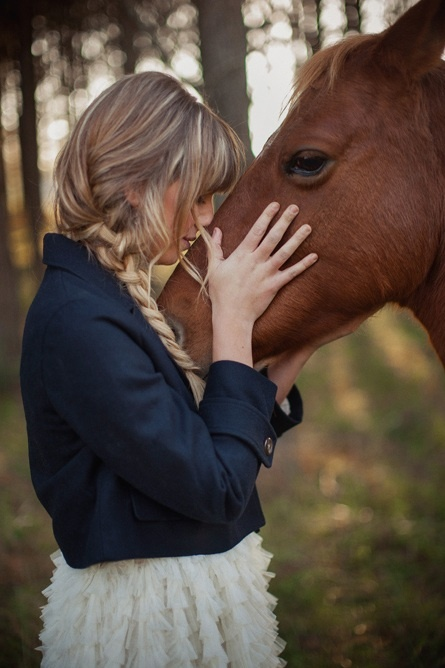 Beautiful horse and girl in the woods