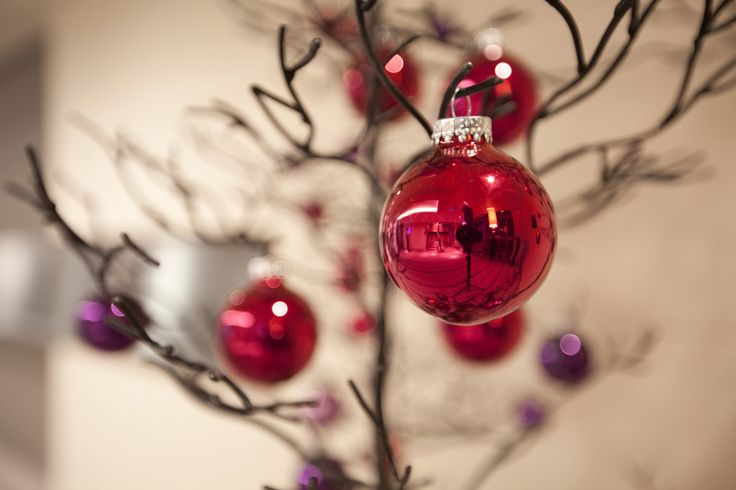 -Weihnachtsgala und Silvesterparty an Bord der Hapag-Lloyd Kreuzfahrten Flotte -Exotische Feiertage mit MS EUROPA und MS EUROPA 2 in Asien und Südafrika -Weiße Weihnachten in der Antarktis mit MS B...