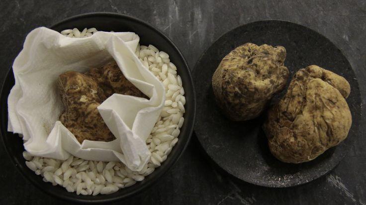 Best way to conserve the white truffles #truffle #whitetruffle #whitegold