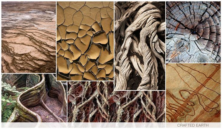 CRAFTED EARTH Crafted Earth is another derivative of Discover, as we see the lines of the land and the solid bark structures inspire with great texture and depth. Old curved tree stumps particularly inspire, as we appreciate their personality and freedom of movement as they claim their space on this earth. The color palette is decidedly neutral.