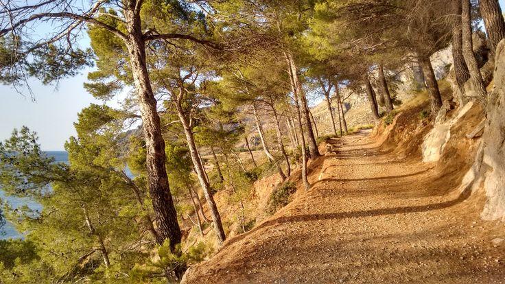 Discover Cala Na Clara and Caló in Mallorca path