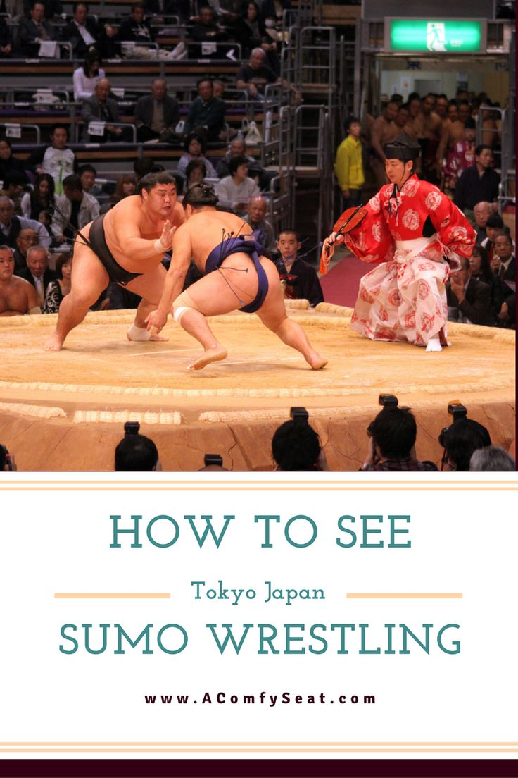 Seeing a sumo wrestling tournament in Tokyo Japan is so exciting. Read our tips to get the most out of this fun experience.