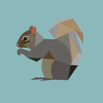 Squirrel Illustration Print by NeatoNectarine on Etsy, $8.00