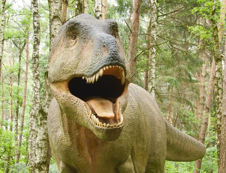 © Dinosaurier-Park Münchehagen GmbH & Co. KG
