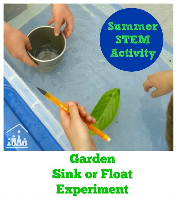 Fun Summer Stem Activities: 1000+ Images About Simple Summer Fun On Pinterest