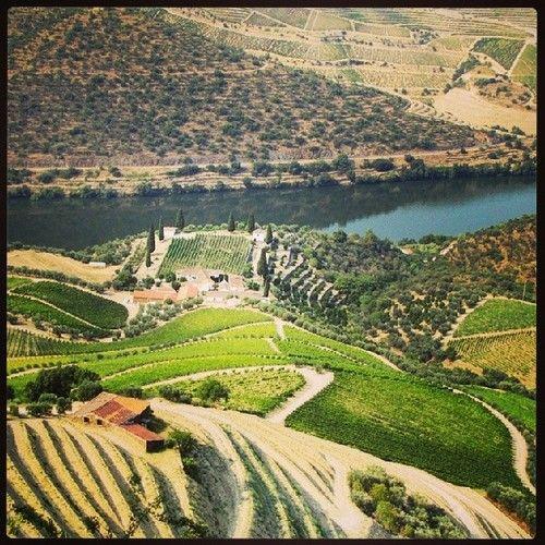 Visite os vinhedos adormecidos do Vale do Rio Douro