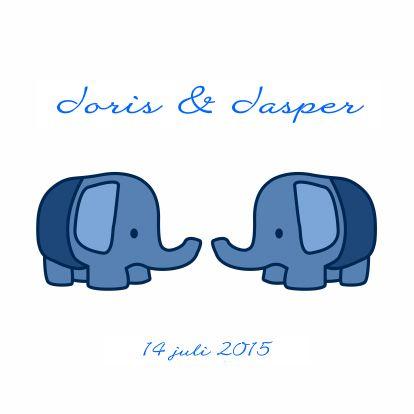 Olifantjes tweeling jongens - Geboortekaartjes - Kaartje2go