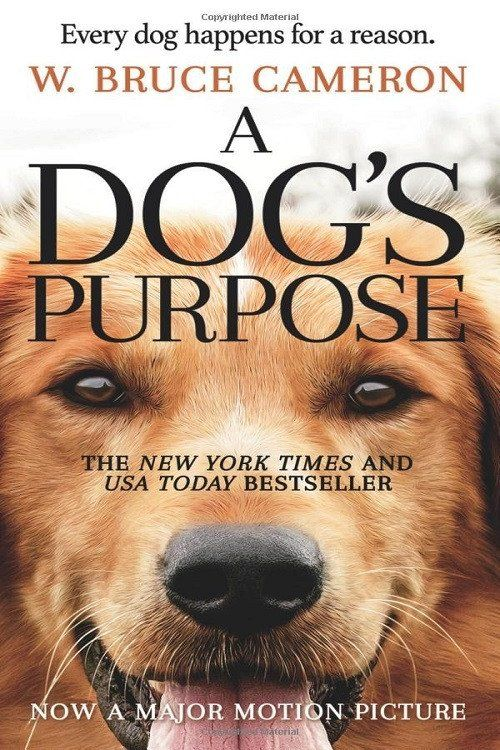 A Dog's Purpose?the #1 New York Times bestseller?is heading to the big screen! Based on the beloved bestselling novel by W. Bruce Cameron, A Dog's Purpose, from director Lasse Hallström (The Cider Hou