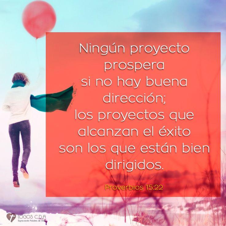 Ningún proyecto prospera si no hay buena dirección; los proyectos que alcanzan el éxito son los que están bien dirigidos.  Proverbios 15:22 T.L.A