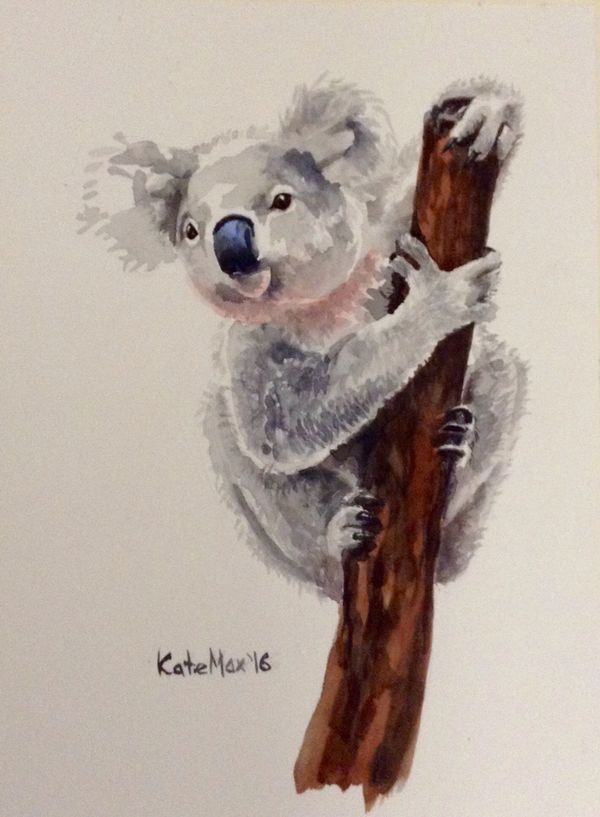 Koala - original painting -watercolor - 2016 KateMaxArt