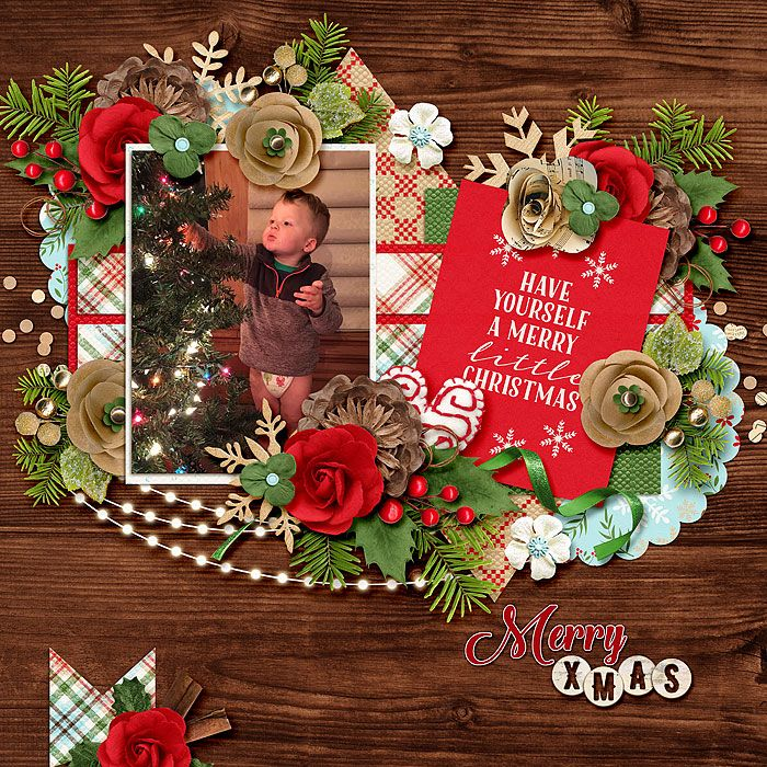 Christmas Woods by Kristin Cronin-Barrow & Digital Scrapbook Ingredients http://www.sweetshoppedesigns.com/sweetshoppe/product.php?productid=35585&cat=877&page=1 Keep Calm 1 by Miss Mel https://www.pickleberrypop.com/shop/product.php?productid=47722&cat=226&page=2