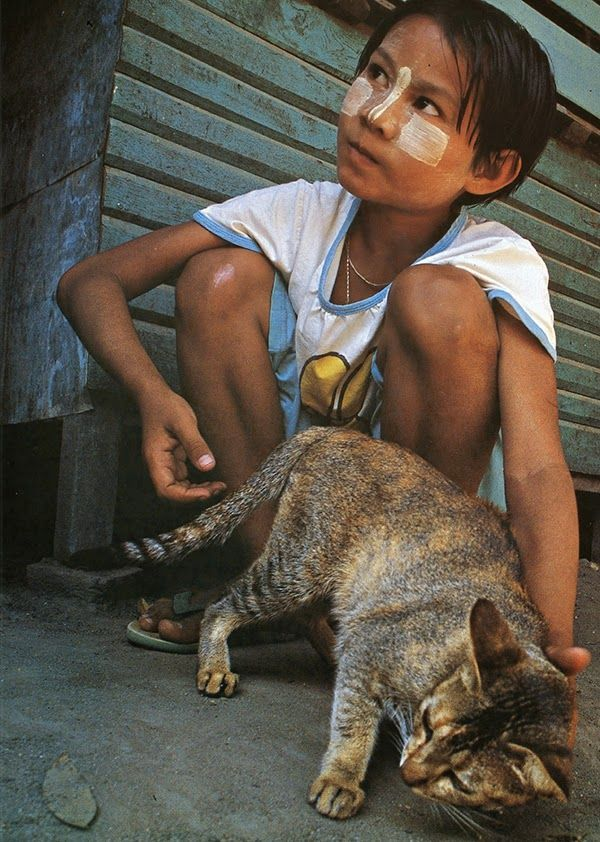 In the village of Pyay, Myanmar, a girl plays with the neighborhood cats. On the girl's cheeks and nose is a substance from the thanakha tree, which serves as both makeup and sunscreen. Her feline companions will soon take refuge in the shadows, between the pillars that carry the house. From http://www.traveling-cats.com/2015/02/cats-from-pyay-myanmar.html