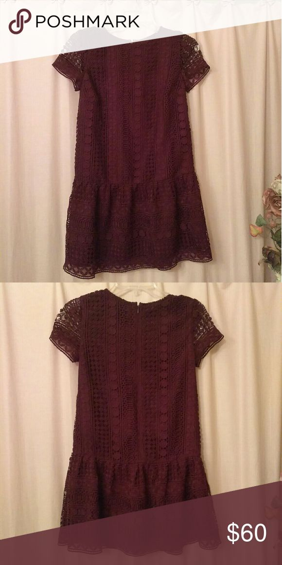 NWT Loft Petites Burgundy Lace Dress New Ann Taylor LOFT Petites burgundy maroon lace crochet dress with a drop waist, as seen on the fashion blogger lace & lashes, check out her blog LOFT Dresses Mini