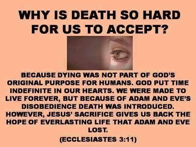 Why is death so hard for us to accept?