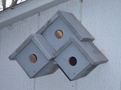 Bird houses... This would be easy to make or you could buy 3 of these and put them together like this