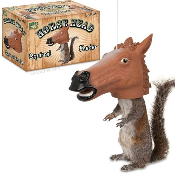 """$39.99 - Accoutrements Horse Head Squirrel Feeder We all know how funny the Horse Mask is and how well it sells. Well, it turns out it's even funnier on a squirrel. This hanging vinyl 6-1/2"""" x 10"""" (16.5 cm x 25.4 cm) squirrel feeder makes it appear as if any squirrel that eats from it is wearing a Horse Mask. You'll laugh every morning as you drink your coffee while staring out the window into your backyard. Hole on top for hanging with string (not included)."""