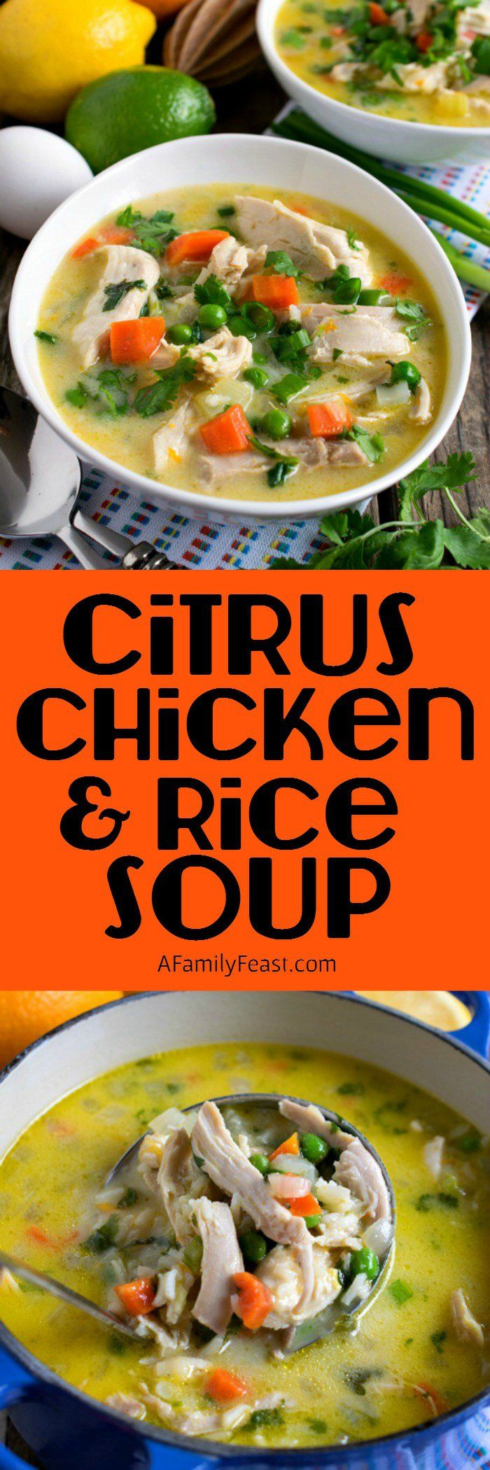 Citrus Chicken and Rice Soup - Orange, lemon and lime juice add a ...