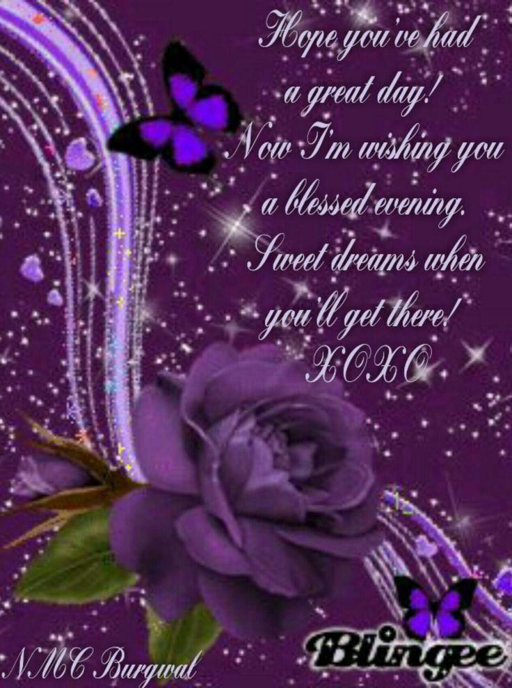 Goodnight | Purple roses | Good night quotes, Good night ...