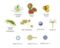 Cross Stitch Pattern -- Common Microbes, set 6, with MRSA, stalked ciliates, water bear, hepatitis, yellow fever