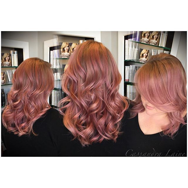 Pm Hair Color 1000 Images About Paul Mitchell Color