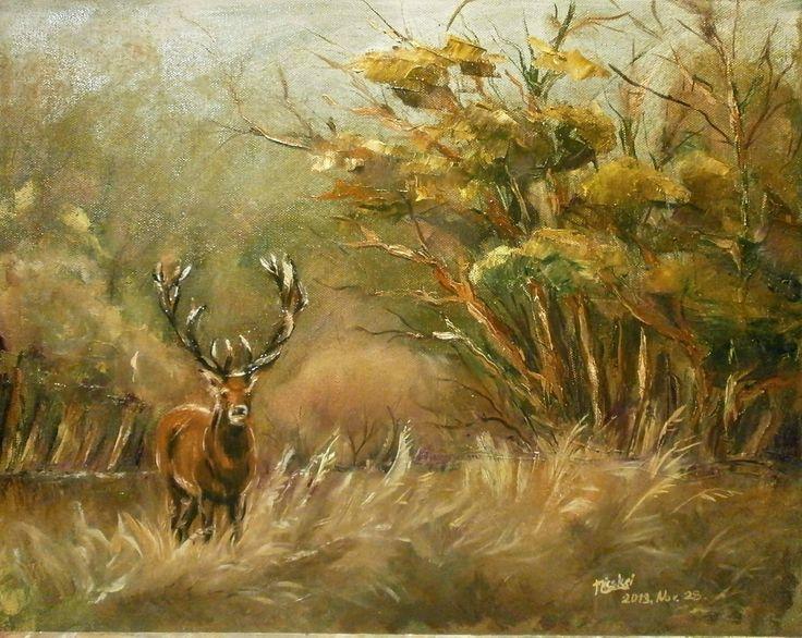 Szarvas-olaj-vászon-40x50 cm