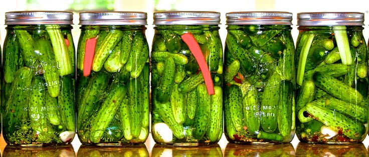 Dad's Absolute Best Dill Pickle Recipe