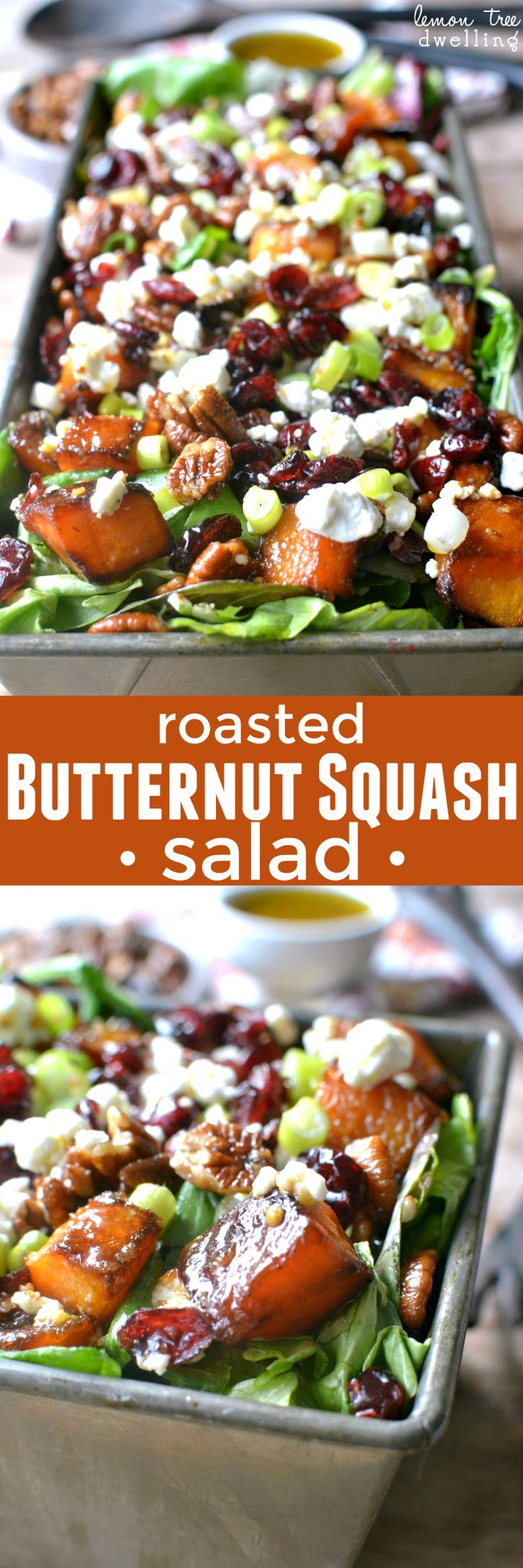 Mixed greens topped with roasted butternut squash, pecans, dried cranberries, goat cheese, and maple mustard vinaigrette. The BEST Thanksgiving salad!!