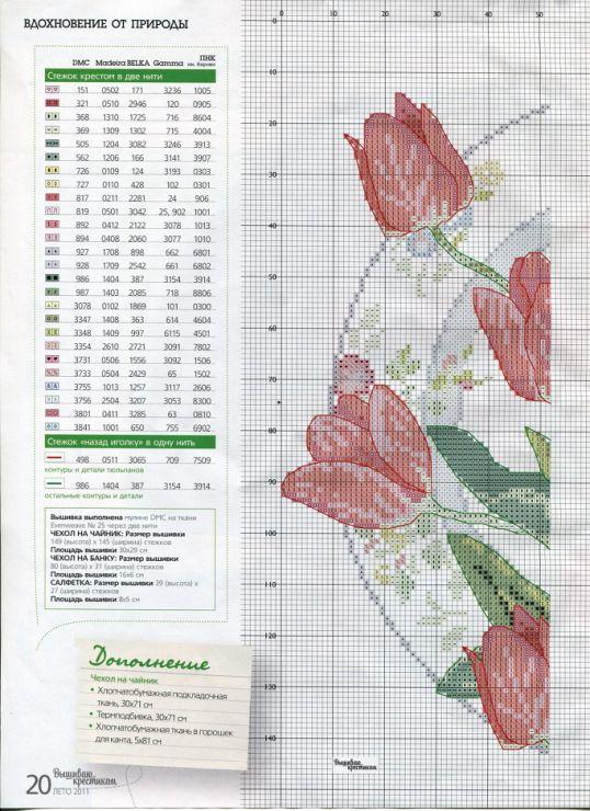 тюльпаны 1