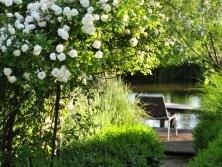 Sommer | Graf Garten