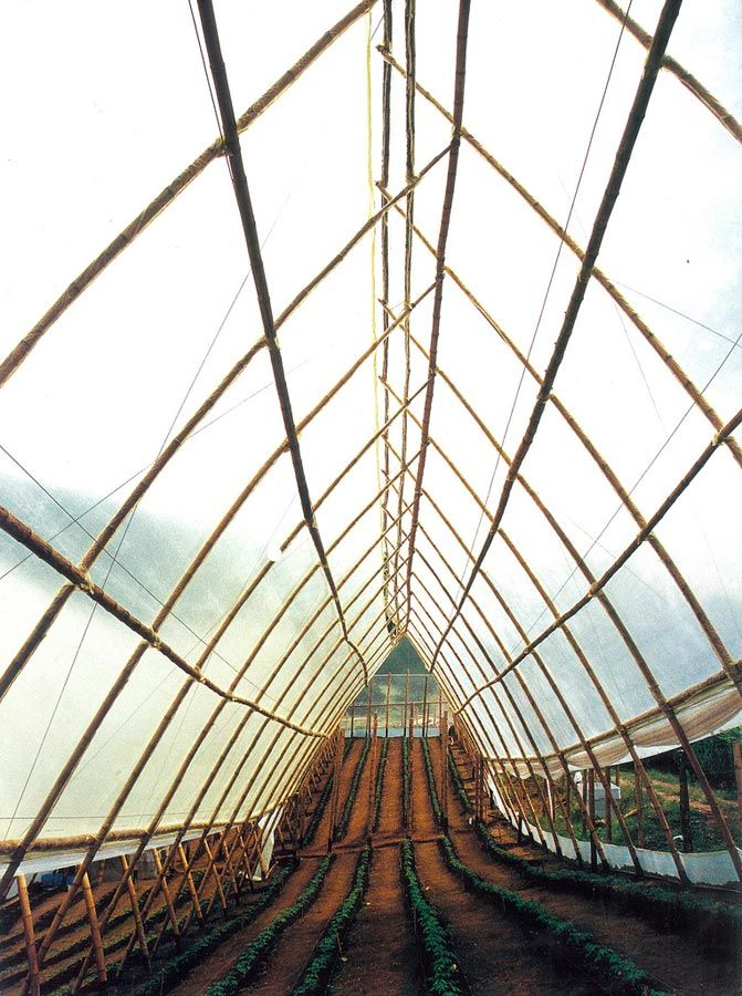 Guadua Bamboo Greenhouse in Colombia by Marcelo Villegas | Courtesy: arc10studio