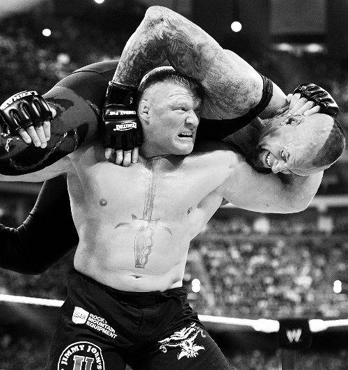 Brock Lesnar vs. Undertaker