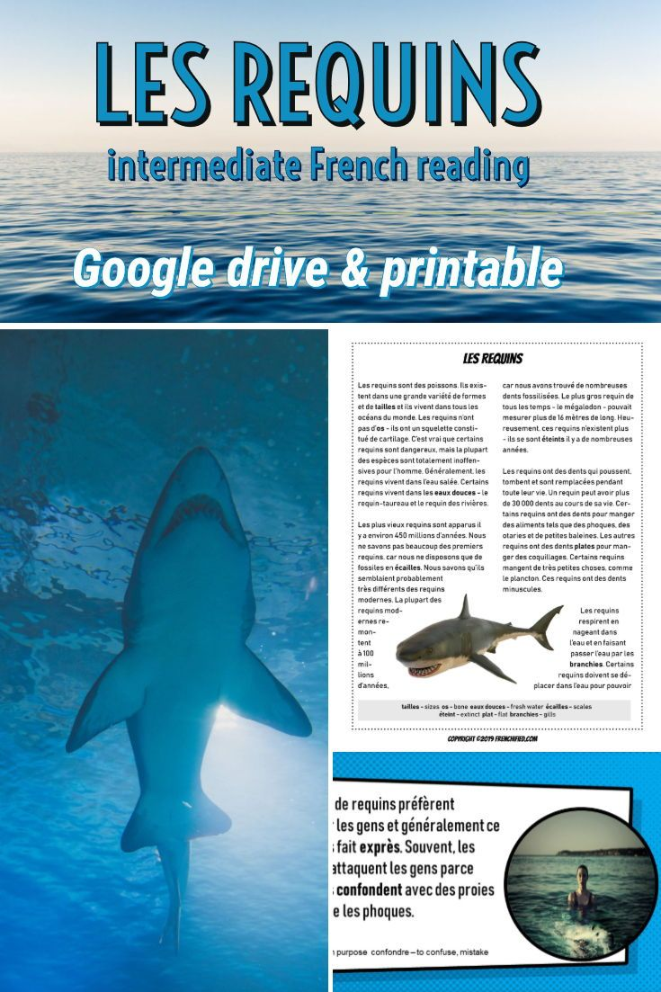 Les Requins Reading For Intermediate French Printable Google Drive French Teaching Activities French Activities French Printable Free printable french reading
