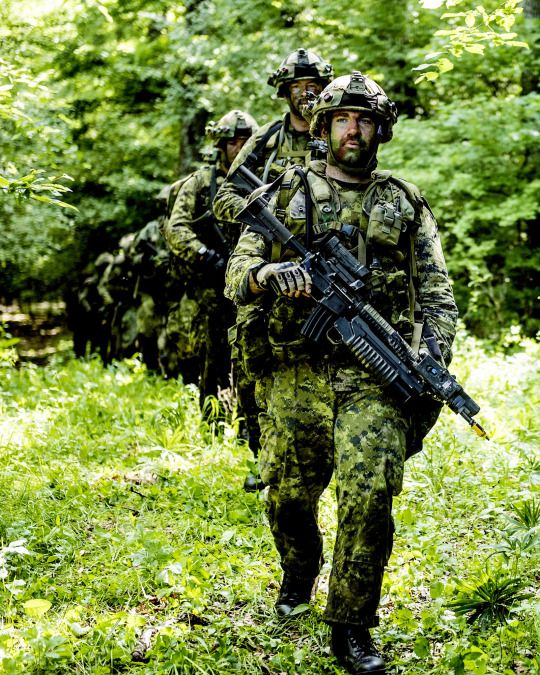 Canadian Land Task Force and British Army soldiers during Exercise SARMIS 15 in Cincu, Romania on May 26, 2015 during Operation REASSURANCE.