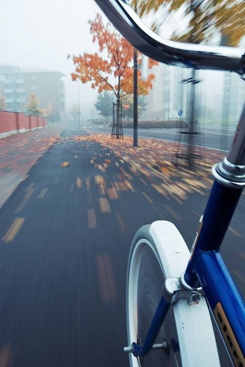 Someone on a bike with slow shutter speed which captures the bike perfectly because it's attached to it but the surroundings go blurry