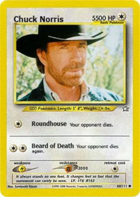Absolute+best+collection+of+Chuck+Norris+jokes