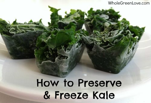 Preserving Kale http://wholegreenlove.com/2013/08/16/how-to-harvest-preserve-freeze-kale-perfect-for-use-in-smoothies/
