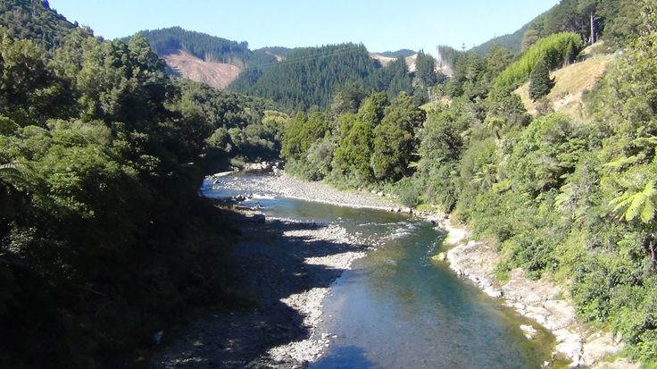 Driving through the gorge to Gisborne NZ