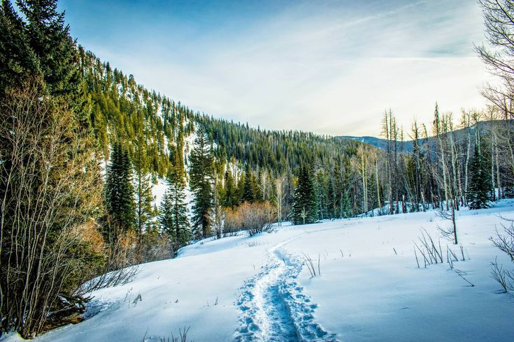 The backcountry winter snow in Colorado just keeps on giving; near Vail [OC][4898x3265] http://ift.tt/2Dx0tFA